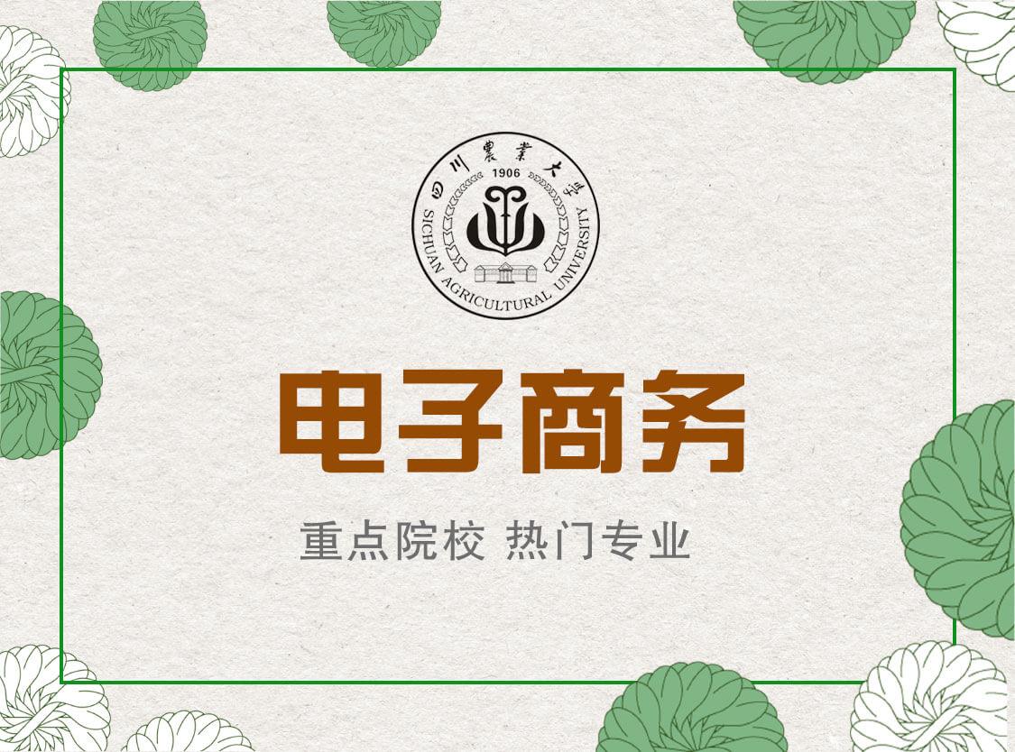 电子商务__四川农业大学电子商务专业,